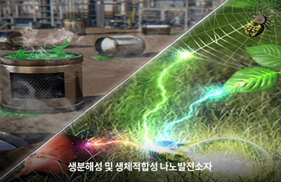 화공 김진곤 교수팀, 버려지는 달걀 껍질·거미줄로 전기 만든다
